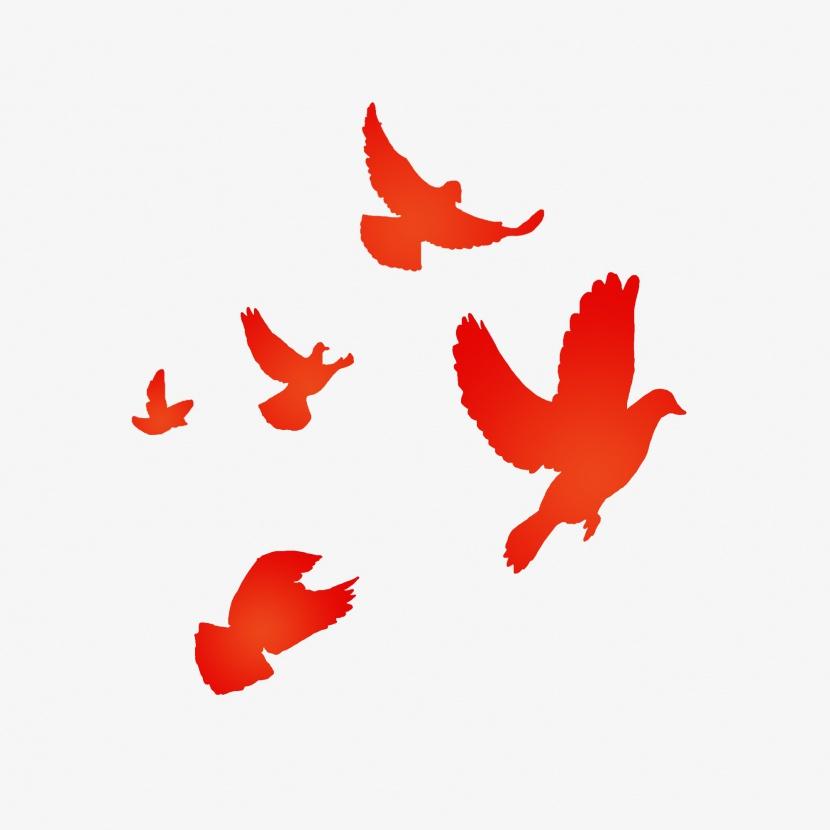 扣扣邮箱登录_和平鸽飞_免抠元素_装饰元素_动物共享免费下载 - 花猫素材网 ...