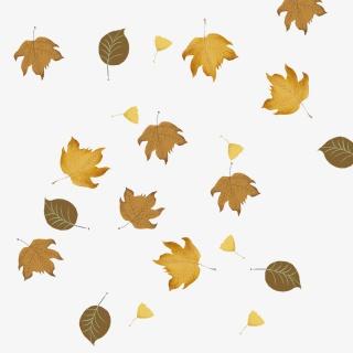 秋叶子树叶银杏叶枫叶手绘PNG免抠素材