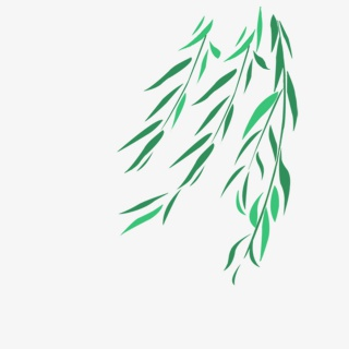 柳叶夏日叶子卡通手绘高清矢量