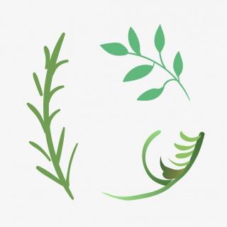 绿色树枝卡通素材