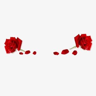 一支玫瑰花花瓣素材PNG