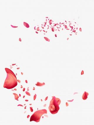 粉色玫瑰花瓣高清png素材