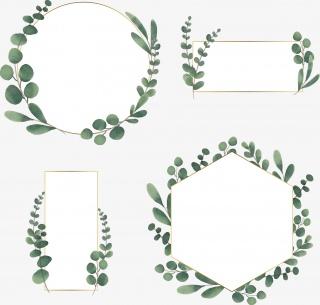 小清新绿色植物几何边框合集