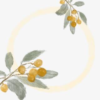 水墨边框植物中国风