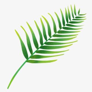 叶子绿色扁平热带植物叶子png