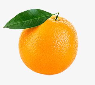 橙色香甜水果带叶子的奉节脐橙实