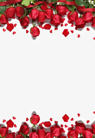 红色玫瑰花边框