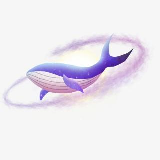 梦幻手绘星空鲸鱼月亮