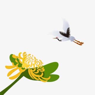 菊花和仙鹤