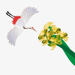 菊花和仙鹤中国风