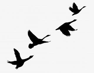 飞鸟剪影装饰图案免抠素材