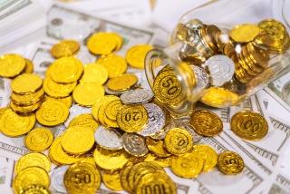 倒出的金币大量金币银币