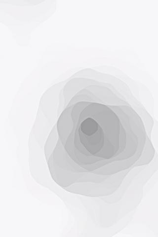 黑白灰性冷淡风抽象玫瑰纹理背景