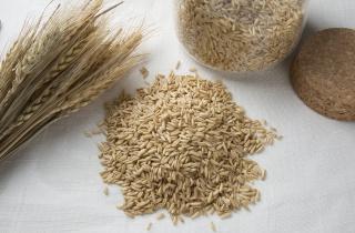 生活食材粮食燕麦高清图